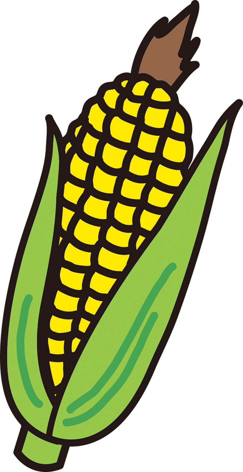 遺伝子組み換え食品(GMO)で癌に。あの商品もそうだったのか
