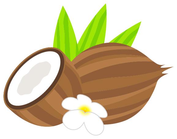 ココナッツオイルはHIVや癌に効果がある
