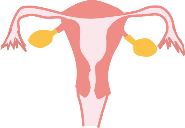 子宮筋腫の大きさはどれくらいなのかを産婦人科医に聞いた